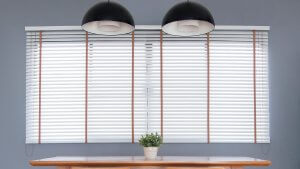 Mini Blinds with Cords